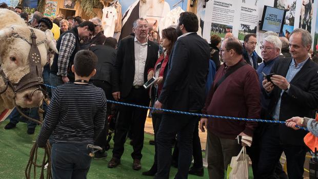 Salon international de l'agriculture 2019 - AgencePhileasFotos