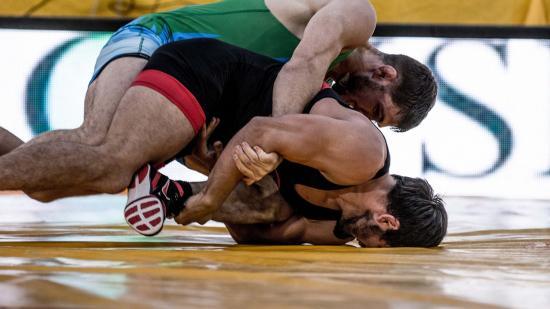 Championnats de France de lutte