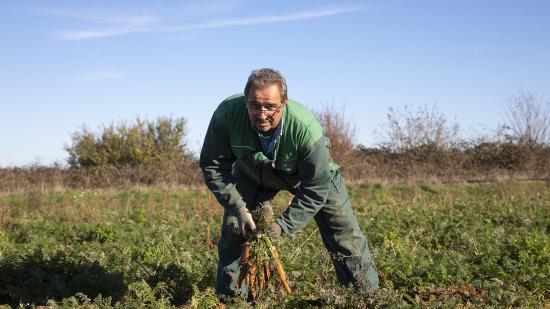 Etienne Prévot, éleveur de bovins et cultivateur de légumes biologiques à Sainte-Magnance (89) - Photo Région Bourgogne-Franche-Comté David Cesbron