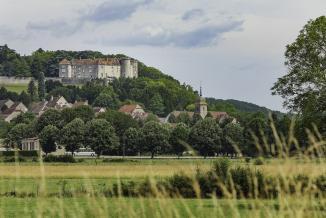 Patrimoine - Château de Ray-sur-Saône