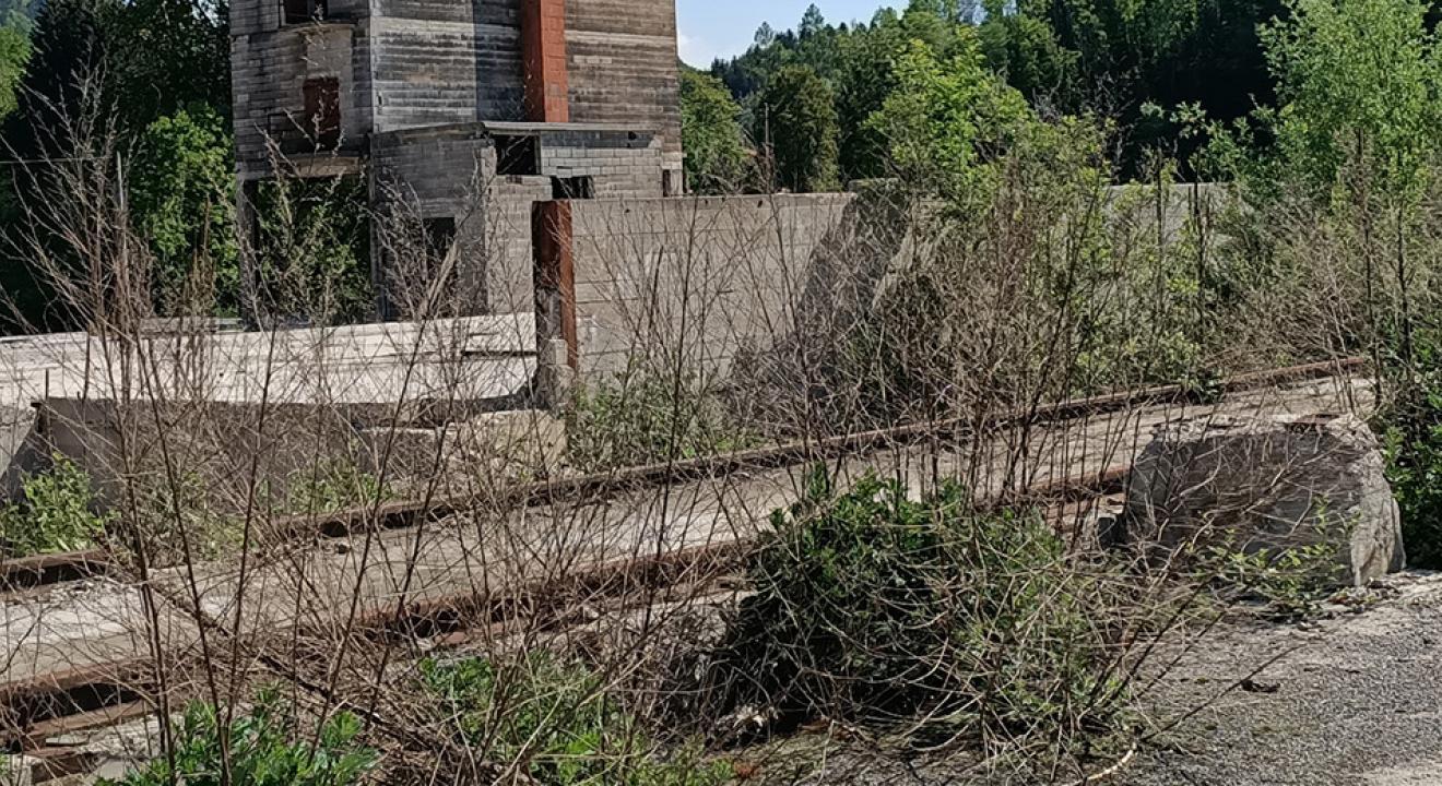 Friche de 2 hectares laissée par l'incendie d'une scierie en 2015 à Châtel-de-Joux (Jura) - Photo DR